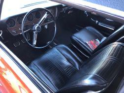 GTO13